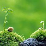 Tiga Hal yang Dibutuhkan Seorang Pengembara Kehidupan