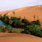 Al Ahnaf bin qois: Ulama Besar Tabi'in